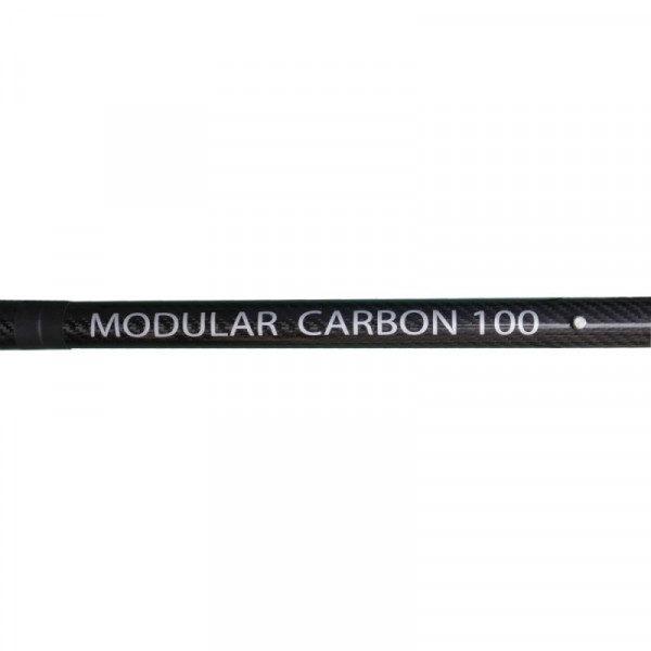 Modular Carbon Safe